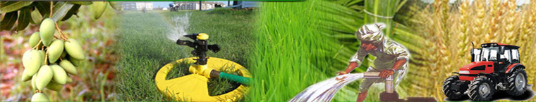 Agriculture Pesticide, Seeds and Fertilizer Banner